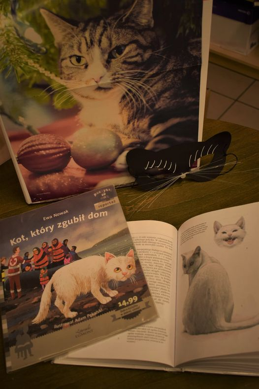 Książka z okładką kota, maska kota z nosem i książki o kotach