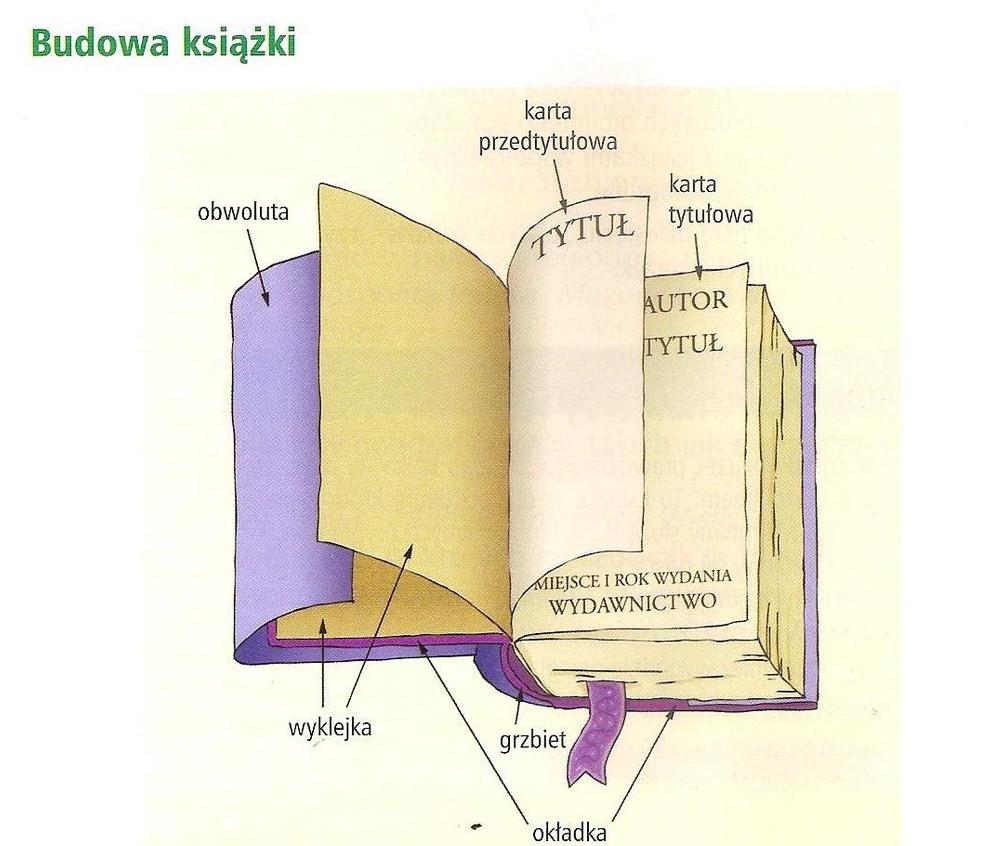 budowa książki schemat