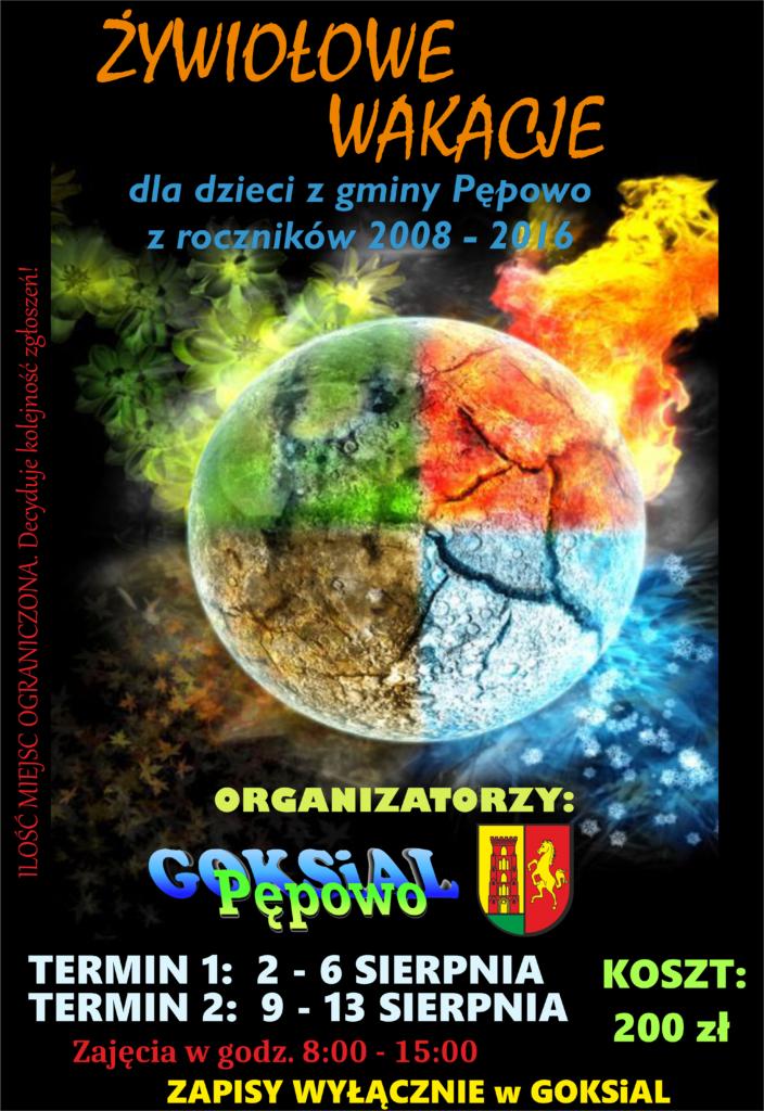 plakat żywiołowych wakacji w centrum kula ziemska podzielona na cztery żywiołowe sfery: brązową ziemię, niebieską wodę, czerwony ogień i zieloną roślinność