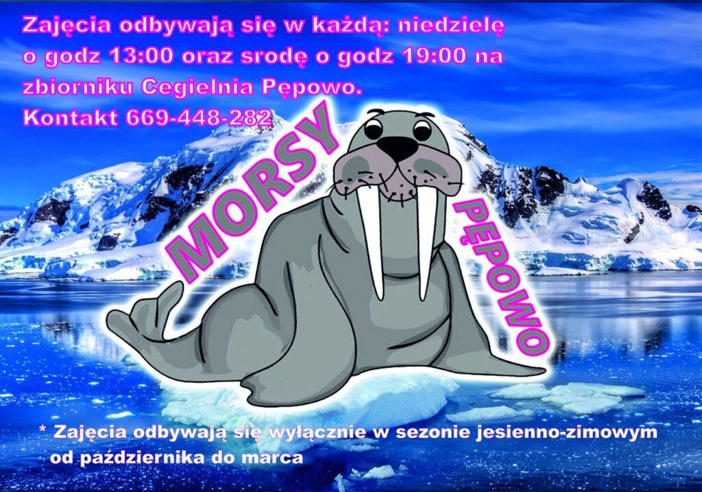 Logotyp organizacji pępowskich morsów niebieski plakat na środku z szarym morsem z długimi kłami.